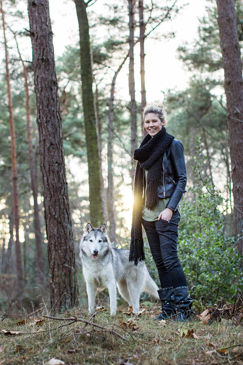 Fotoshoot met een Alaska Malamute hond in Soesterduinen