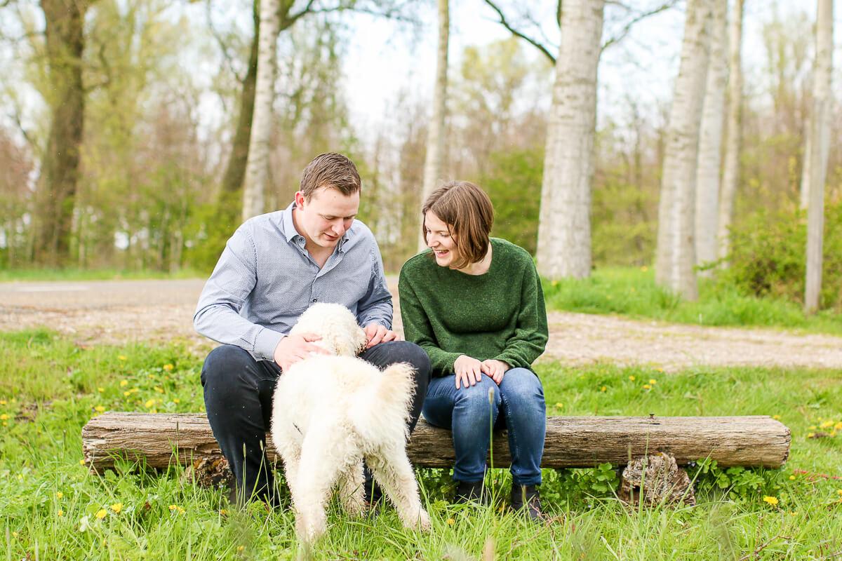 fotoshoot met je hond Daisy labradoodle linschoten-6327